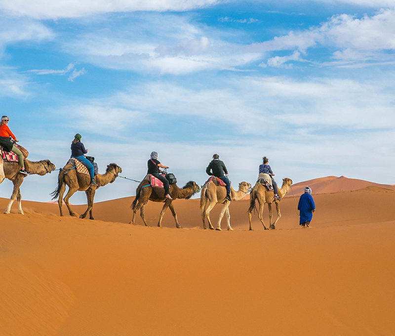 Cmael trek: Morocc package holiday